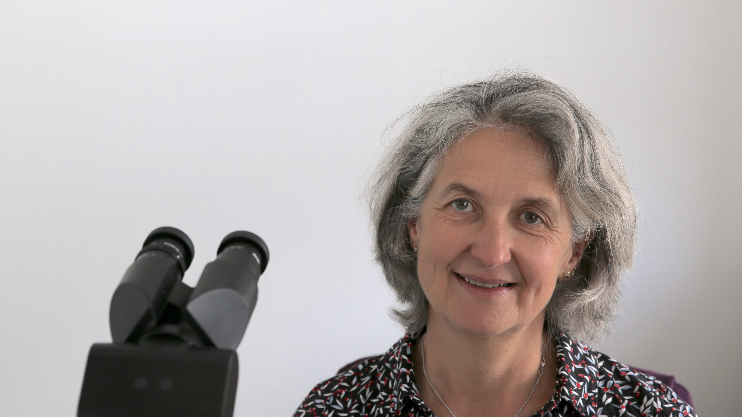Dr. Wölfl
